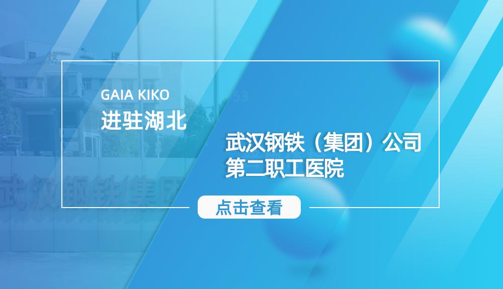 进驻武汉钢铁(集团)公司第二职工医院